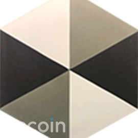 Hexagon tile Her 101
